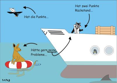 DVL Haifischbecken