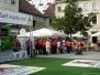 """VfB bei """"Deutschland bewegt sich"""" in Suhl"""