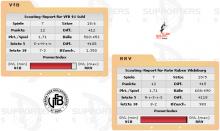 Rote Raben Vilsbiburg vs. VfB 91 Suhl (06.12.2008)